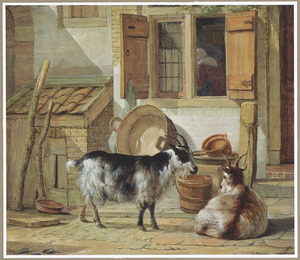 Twee geiten vastgebonden op een binnenplaats