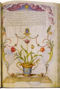 Vaas met drie tulpen en insecten op een stenen piëdestal