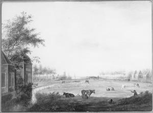 Landschap met koeien in de weide