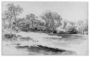 Boslandschap met grote vijver
