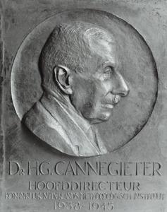 Portret van Hendrik Gerrit Cannegieter (1879-1964)