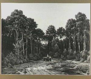 Open plek in het bos met houtsprokkelaars