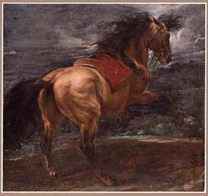 Studie van een steigerend paard