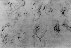 Elf studies van haartooi