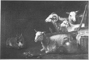 Schapen en een geit in een stal