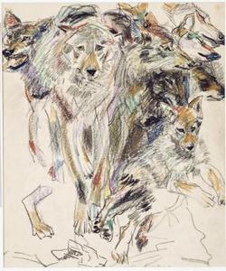 Schetsblad met wolven
