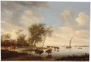 Rivierlandschap met koeien in het water en zeilboten in de verte