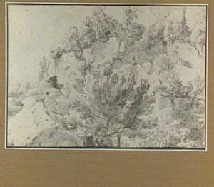 Rotsachtig landschap met bomem