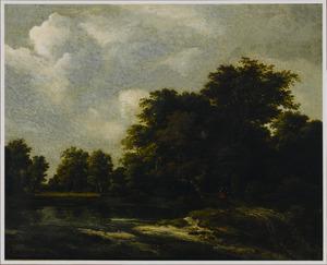 Boslandschap met wandelaars op een pad langs een water
