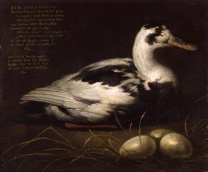 Portret van de eend Sijctghen
