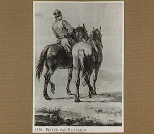 Ruiter met paarden