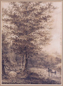 Boslandschap met reiziger en paard