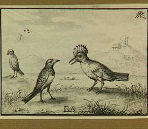 Drie vogels in een rivierlandschap