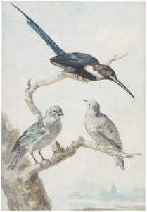 Drie vogels op een tak, op de achtergrond een landschap