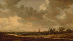 Vlak Nederlands landschap