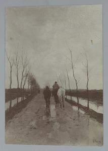 Paarden op een landweg