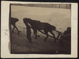 Man en paarden op de sneeuw (nieuwbouw omgeving Overtoom te Amsterdam)