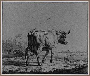 Koe in een landschap
