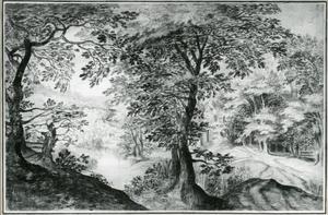 Boslandschap met een rivier