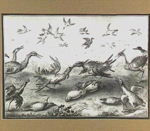 Vogelgevecht