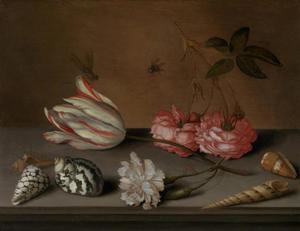 Rozen, een anjer, een tulp, schelpen en insecten op een stenen tafel