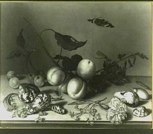 Stilleven met abrikozen en kersen, bloemen, schelpen en insekten