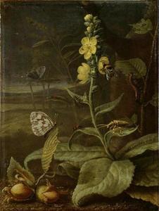 Bosstilleven met bloeiende koningskaars en vlinders
