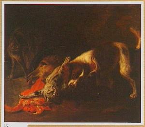 Hond en katten in gevecht