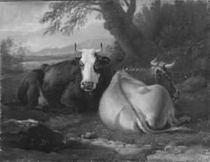 Twee rustende koeien