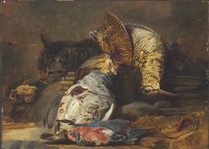 Kat bij jachtbuit van gevogelte