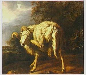 Ram, zich krabbend, op een boomrijk erf
