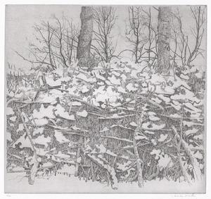 Besneeuwde heg (Sneeuw II), Rhijnauwen