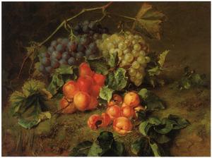 Stilleven met druiven en abrikozen