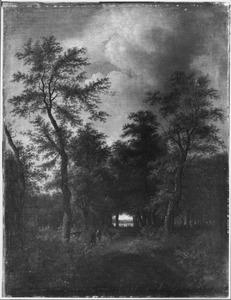 Boslandschap met een pad