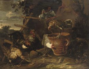 Haan en kippen in een landschap