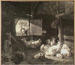 Een jongen kijkt door de deuropening naar geiten in een stal