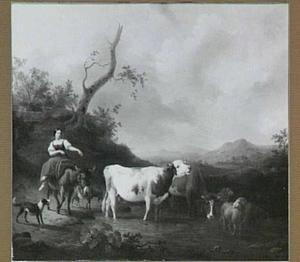 Herderin op ezel drijft haar vee door een doorwaabare plaats