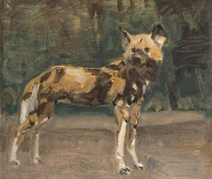 Staande wilde hond