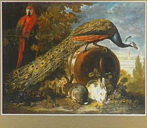 Pauw op een stenen bol, in de voorgrond twee konijnen en links in de struiken een papegaai