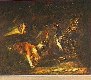 Uil, pauw, haan en jachthond in een avondlandschap