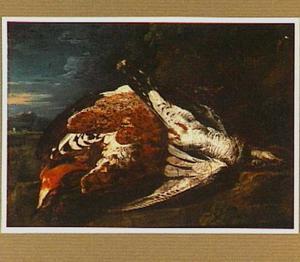 Dode vogels in een landschap
