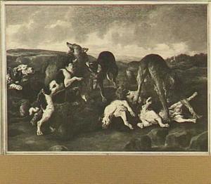 Honden en wolven in gevecht