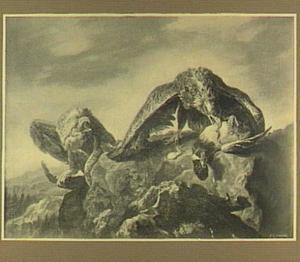 Twee adelaars verscheuren eend