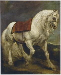 Studie van een paard uit Andalusië
