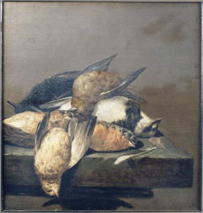 Stilleven met kleine dode vogels