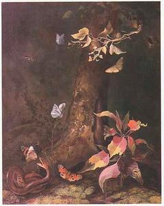 Slang en vlinders aan de voet van een boom