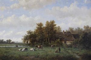 Zomers landschap met vee