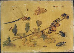 Studie van insekten bij een takje bessen