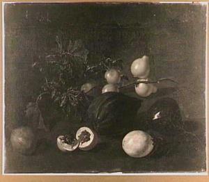 Surinaamse vruchten