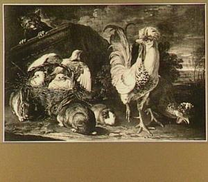 Kat op de loer bij een mand met duiven, linksvoor twee konijnen en een marmot, rechts een haan en een kip